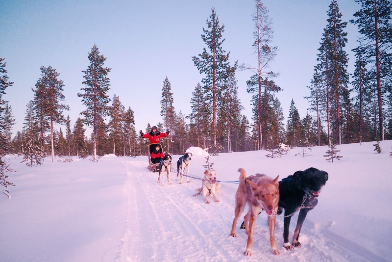 Husky & co Finland