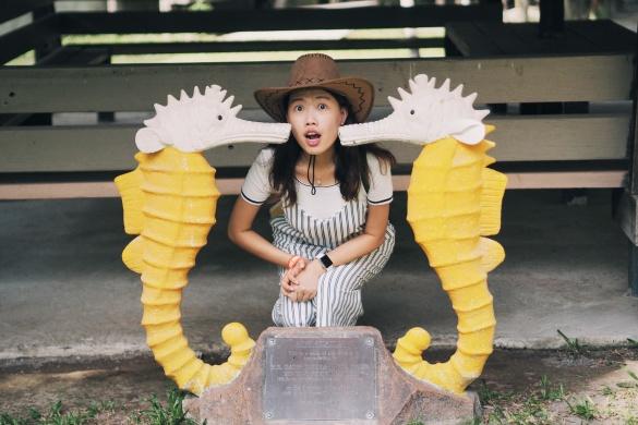 Miri Sarawak Malaysia